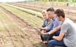 Agriculture courses continue to attract student numbers
