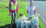 Templemore Tidy Towns - display of civic spirit