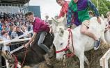 Visitor numbers at Clonmel Show matched event's turnout record, according to organisers