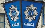 Gardaí trying totrace horse drawn carriage driver involved in Tipperary hit-and-run accident