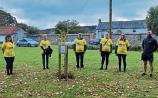 Tree of Hope planted in Carrick-on-Suir in memory of local people who died by suicide