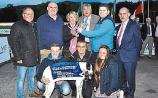 Gardai investigate theft of €1m greyhound