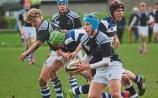 Lionhearted Rockwell bow out of Munster Junior Schools