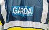 Cannibis seized in Cashel house search