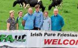 Tipperary farm outside Fethard to host Friesian open day