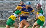 Tipperary camogie girls beat Offaly to reach All Ireland quarter finals