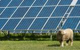 Planning granted for solar farm near Tipp Town