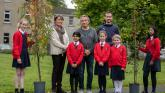 Turning Tipperary green with a donation of 1,000 trees