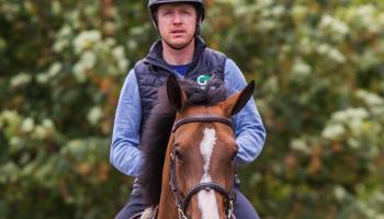 Tipperary's Greg Broderick scores second win at the Dublin Horse Show
