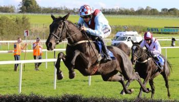 Limerick Racecourse goes Grade 1 for huge Christmas racing festival