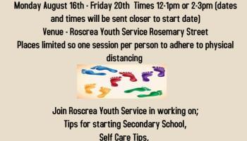 Roscrea Youth Service 'Next Steps' workshop