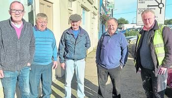 Busy weeks ahead for Cashel Tidy Towns