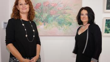 Tipperary artist based in Cork opens her exhibition at 'Cahir Arts'