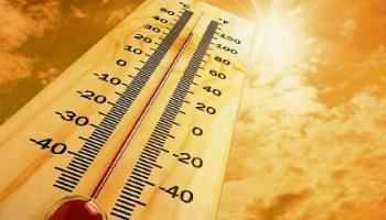 How to survive a heat wave!