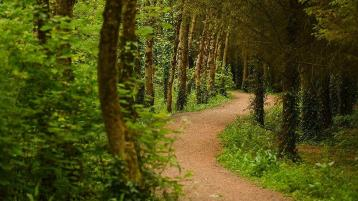 A Wellness Weekend in Tipperary - now that sounds like a tonic