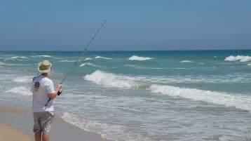 Expert knowledge from sea anglers required for new survey programme