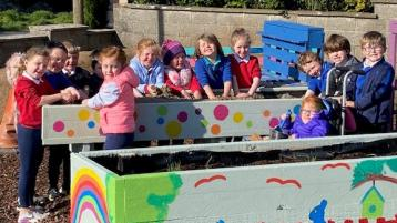 One Tipperary national school is bringing its garden to life