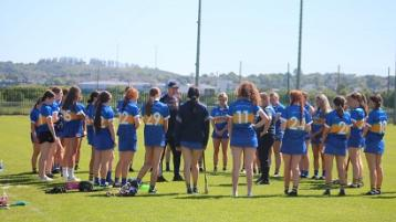 Tipp coach Michael Ferncombe talks to his players during the game