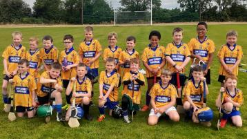 The fields of Tipperary are alive again to the sound of juvenile hurling