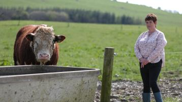North Tipperary IFA chair urges farmers to think safety