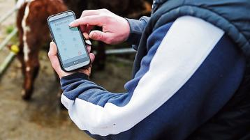 Tipperary-based Herdwatch signs deal with UCD