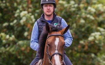 Tipperary showjumpers shine out at Dublin Horse Show