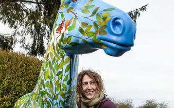 Templemore artist puts her creative stamp on new public arts project