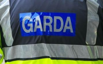 Two car crash on Waterford to Carrick-on-Suir road