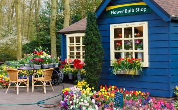 Gardening with James Vaughan: Support your local garden centre