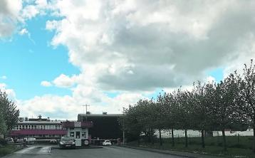 PETA to target Roscrea meat plant with billboard campaign