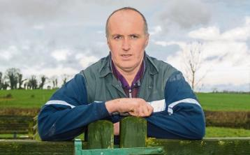 Tipperary farming: TB herds face a 'double whammy'