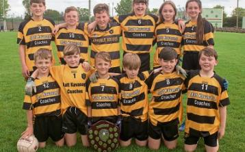 Arravale Rovers, Feile na nOg County Champions