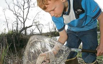 Tipperary's River Ara Wildlife Festival is up and running today and tomorrow