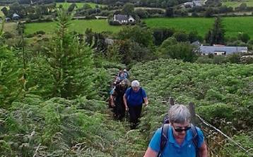Nenagh Walking Club launches social scenic walks