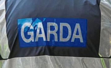 Garda appeal for public's help in solving theft of power tools from Kilfeacle property