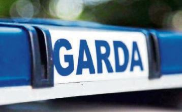 Gardaí investigate theft of child's bicycle in Fethard