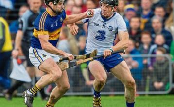 "Tipperary hurling manager Michael Ryan says ""the year is but a pup"""
