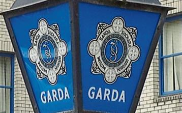 Tipperary gardaí seize unlicensed firearms