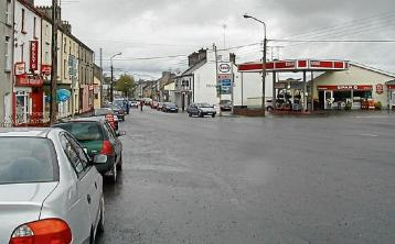 Tipperary councillors in appeal to curb tree planting in Borrisokane