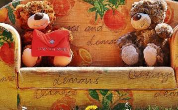 Cashel Library - Teddy bears' picnic