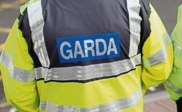 Gardai seize €1,900 worth of drugs during early morning search in Tipperary