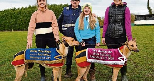 clonmel coursing 2021 betting odds