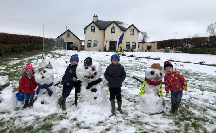 Picture Gallery: Snow day in Tipperary