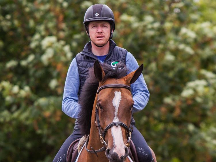 Ambitious show jumper Greg Broderick is building for the future in Tipperary