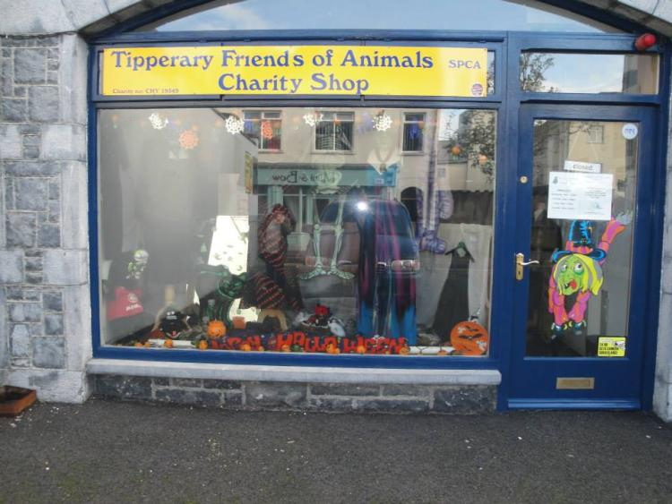 Tipperary friends of animals