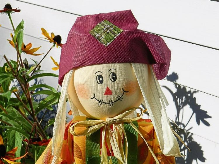 https://www.tipperarylive.ie/resizer/750/563/true/GN4_DAT_17055053.jpg--tipperary_villages_planning_for_halloween.jpg